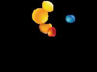 Logo NS2B
